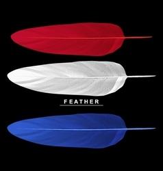 set feathers isolated on black background vector image