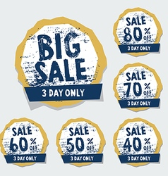 Big Sale tags with badges and labels vector image