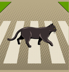 Black cat crosses the road pop art vector