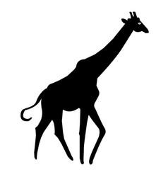 Giraffe silhouette icon vector