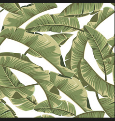 Seamless banana leaves tropical pattern vector