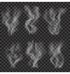 Set of translucent gray smoke vector image