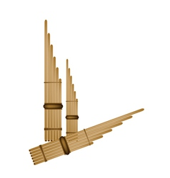 Musical Pan Flute Background vector image vector image