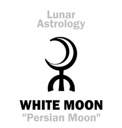 Astrology white moon vector