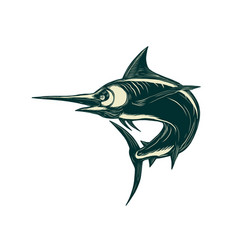Atlantic blue marlin scraperboard vector