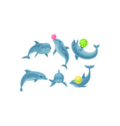 Cute blue dolphins made tricks with balls vector