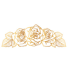 decorative element with outline roses beautiful vector image