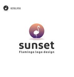 flamingo bird with sunset logo design vector image