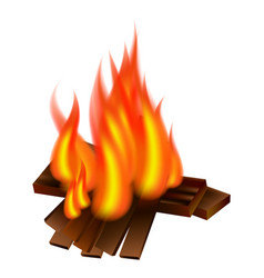 picnic fire icon realistic style vector image