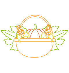 Pumpkins and corns design vector