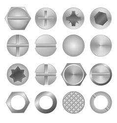 realistic 3d detailed metal screws and heads set vector image