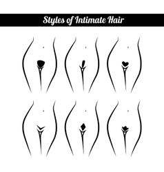 Scheme of hair removal bikini zone vector