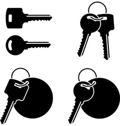 Set of keys third variant vector