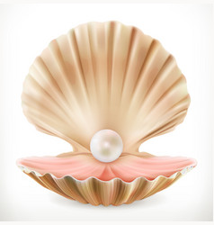 Shell with pearl clam oyster 3d icon vector