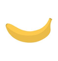 yellow banana icon vector image