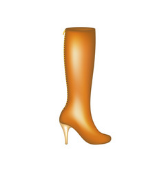 female high boot in brown design vector image
