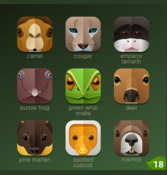 animal faces for app icons-set 18 vector image