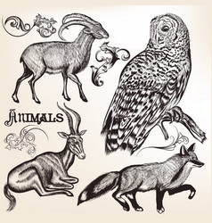 hand drawn animals for design vector image