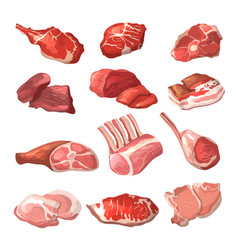 lamb pork beef and other meat pictures in vector image