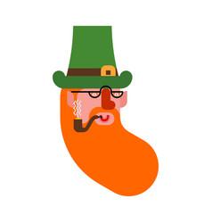 cheerful leprechaun portrait dwarf with red beard vector image