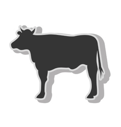 Cow beef farm vector image