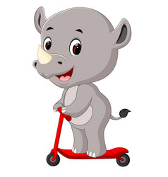 cute rhino riding push scooter vector image