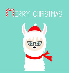 merry christmas llama alpaca baby face wearing vector image