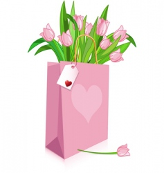 pink tulips in a bag vector image