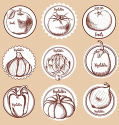 Sketch set of vegetable logos vector image