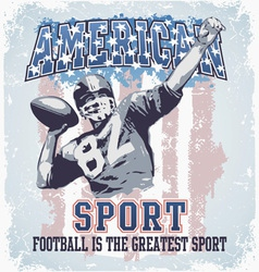 American sport football vector image vector image