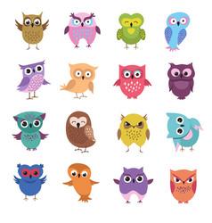 cute cartoon owl characters set vector image