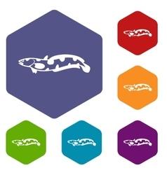 Anarhichas fish icons set vector