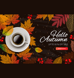autumn sale fall season sale and discounts banner vector image