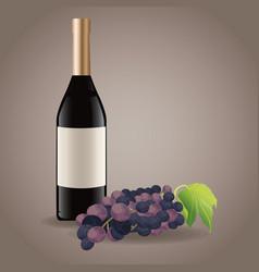 bottle wine grape drink image vector image