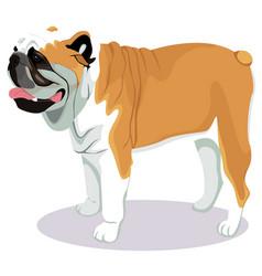 Bulldog cartoon dog vector