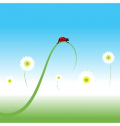 ladybug spring background vector image