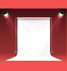 scene palatno for photo shooting vector image
