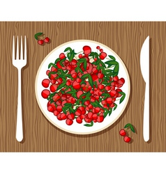 cherries on plate vector image