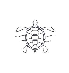 Turtle line icon vector image