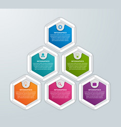 hexagon options infographics template vector image