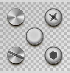 realistic glossy metal screws and rivets on vector image