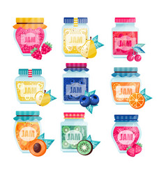 Set glass jars with fruits and berries jam vector