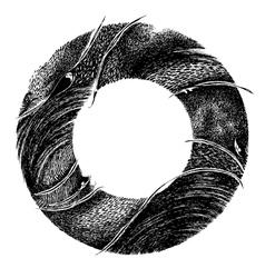 Abstract circle frame vector image vector image