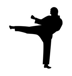 Karate man the black color icon vector