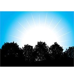 White sun vector image vector image