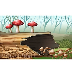 A wood with mushrooms vector
