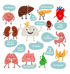Cartoon anatomy organs with smiles vector