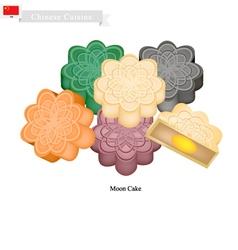 Chinese Moon Cake for Mid Autumn Festival vector