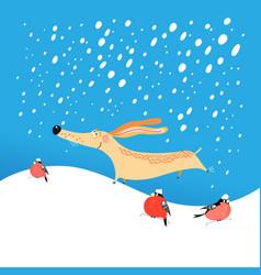 christmas card funny dog vector image