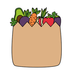 healht food grocery bag vegetable vector image